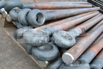 21 - 42mm blank eye bolt forging