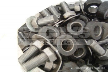 73 - M12x100mm eye bolts