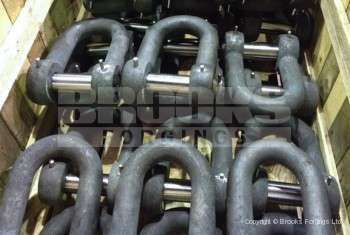50 - Forged Shackles